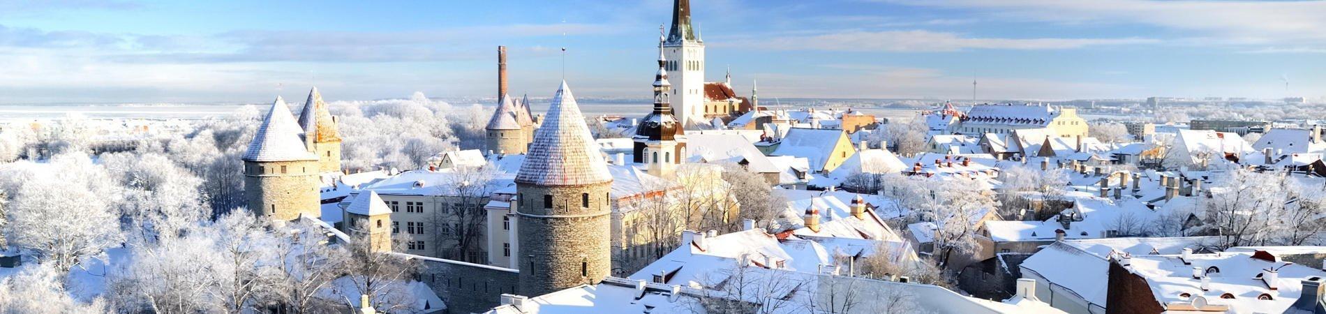 Estonya Üniversiteleri