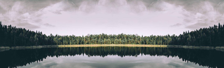 Estonya Yüksek Lisans