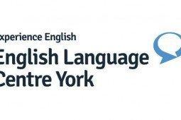 Experience English