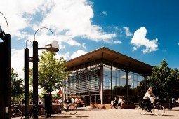 Linköping Üniversitesi